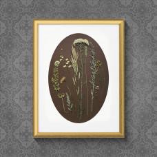 Гербарная композиция из 12 растений и цветов в паспарту