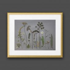 Гербарная композиция (гербарий) из 26 растений и трав